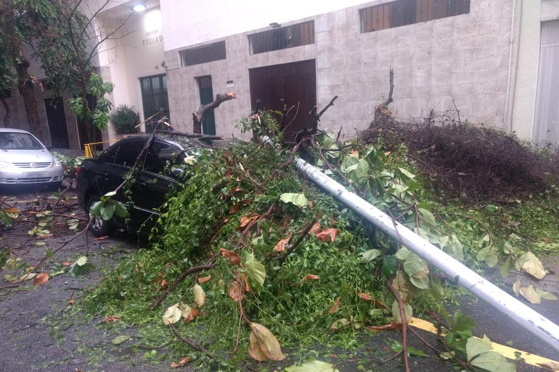 Temporal causa danos no Rio e deixa a cidade em estágio de crise; cinco pessoas morreram