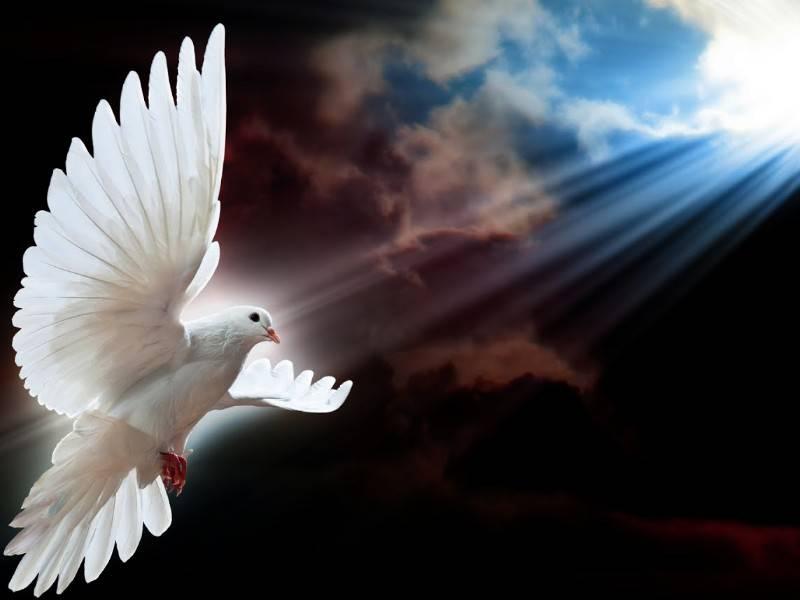 O Espírito Santo só sabe contar o amor!