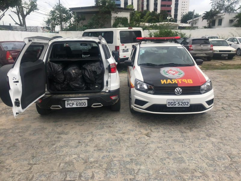 Mulheres são presas em transporte de 50 kg de maconha de Pernambuco para JP