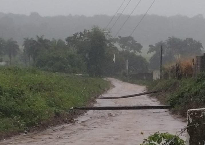 Queda de postes bloqueia acesso à Usina São João, em Santa Rita