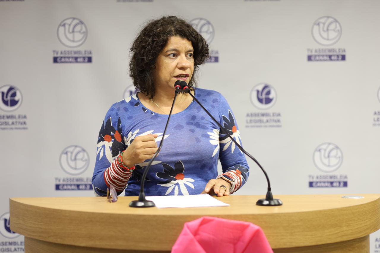 Deputados rejeitam proposta de Estela para voto de repúdio a Bolsonaro