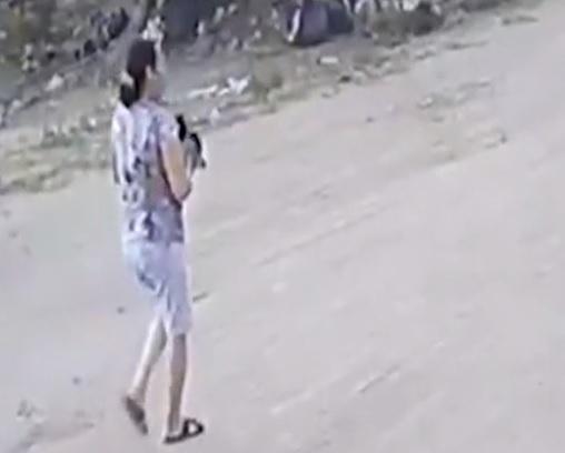 Mulher que jogou gato para ser morto por pitbull em João Pessoa é identificada